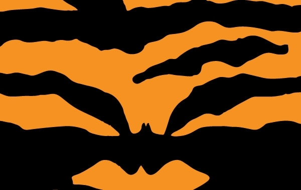 Free Tiger Print Vector