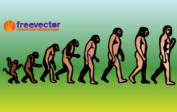 Free Vectors: Evolution | FreeVector