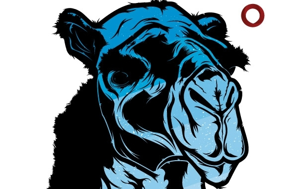 Free Blue Camel
