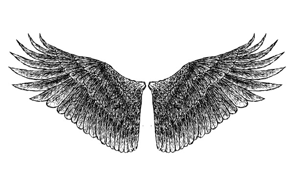 Free HandDrawn Wings