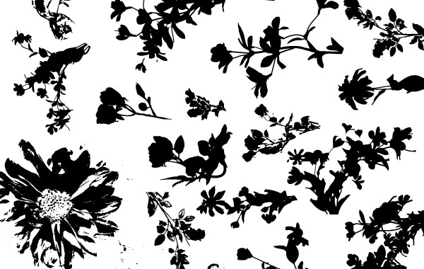 Free Floral Silhouette Vector Pack