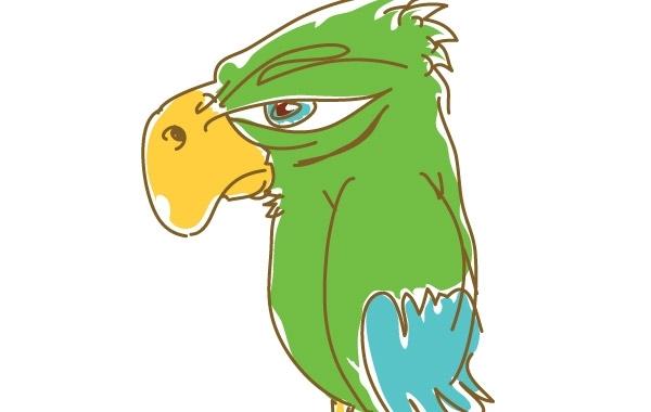 Free Parrot