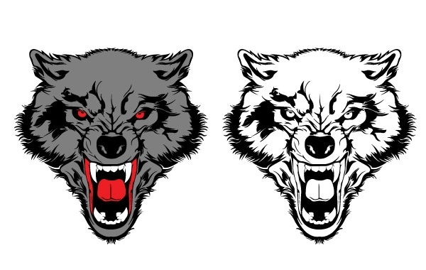 Free Two Wolf Vectors