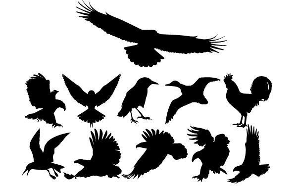 Free Birds Silhouettes