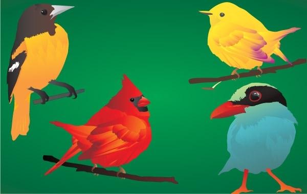Free  4 beautiful & detailed birds!