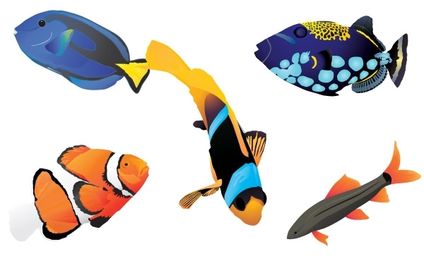 Free Free vector fishes