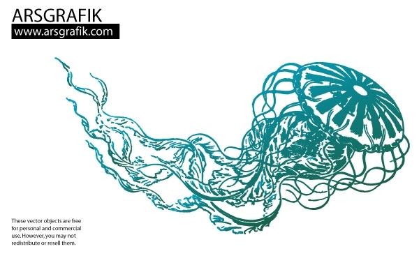 Free Jellyfish Vector