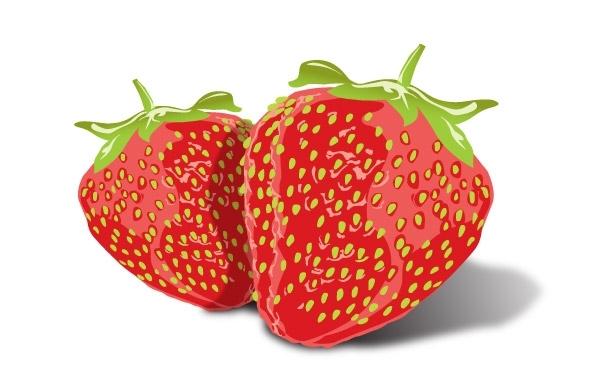 Free Vectors: Tasty Strawberries | Vector Open Stock