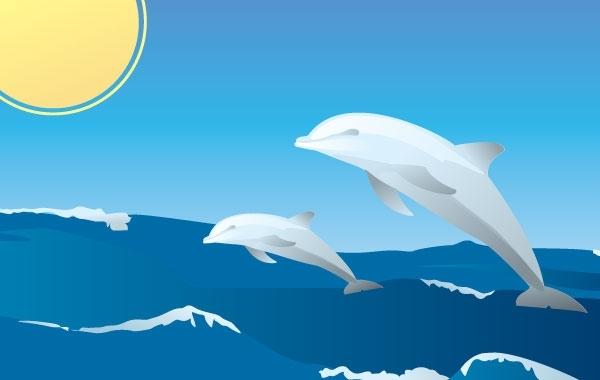 Free Happy Dolphins Vector