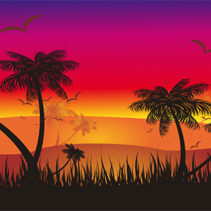 Free Tropical Sunset