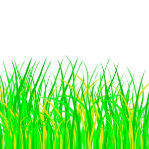 Free Green Grass