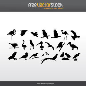 Free Collection Of Birds Silhouettes