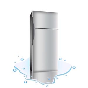 Free Broken Refrigerator