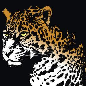 Free Jaguar