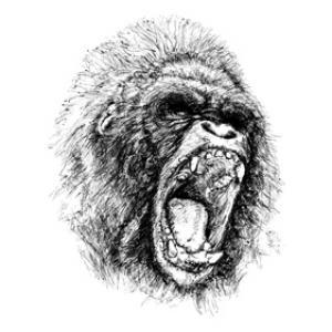 Free Vector Ape Illustration