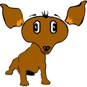 Free Chihuahua Dog
