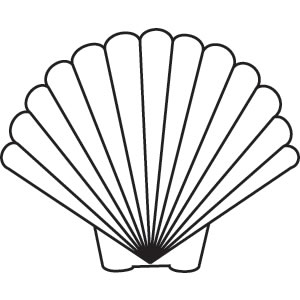 Free Scallop Shell