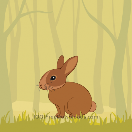 Free Cute Rabbit In the Forest
