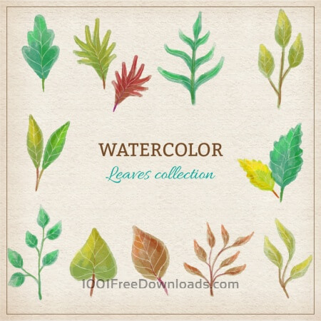 Free Watercolor leaves collection