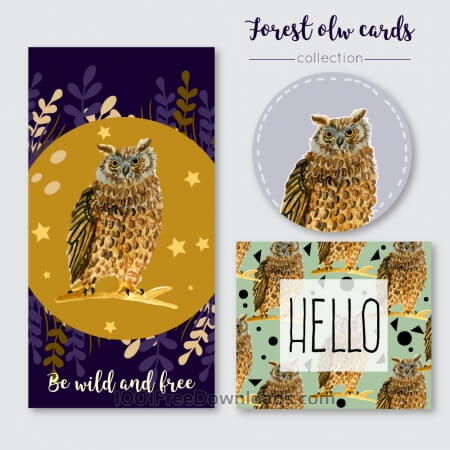 Free Owl summer cards