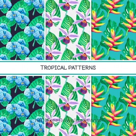 Free Tropical summer pattern collection