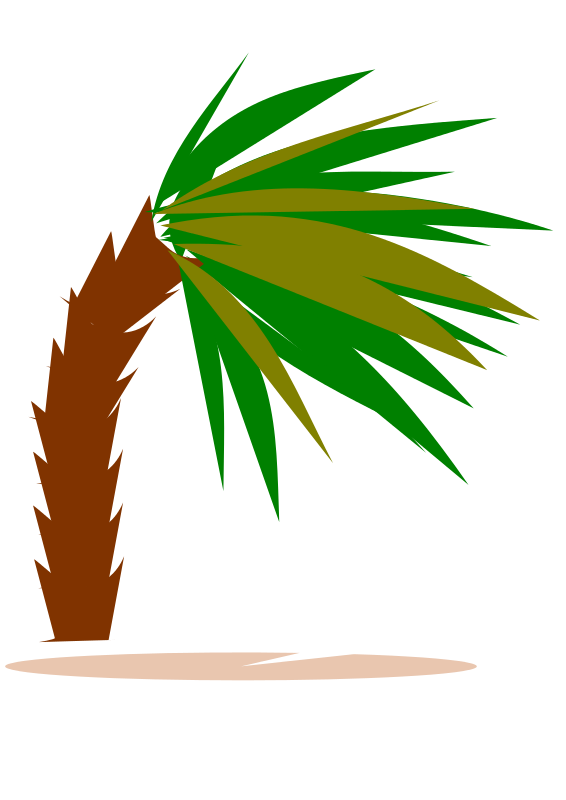Free palmtree