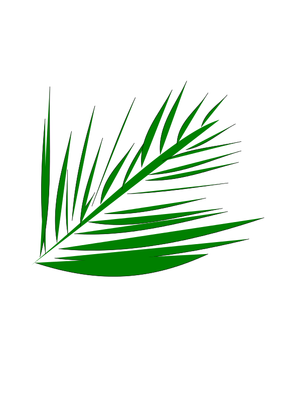 Free palmleaf