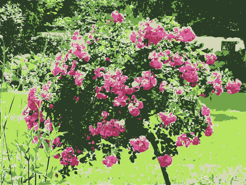 Free Chinese Garden - Bethmannpark