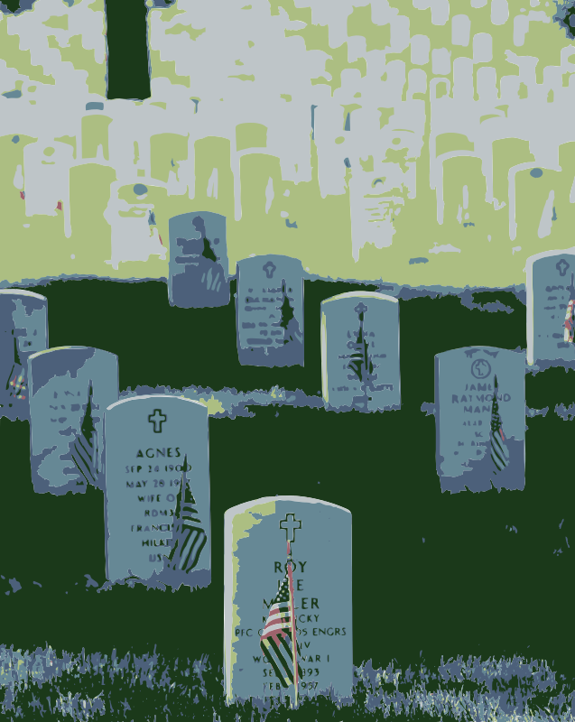 Free Graves at Arlington on Memorial Day Colorized