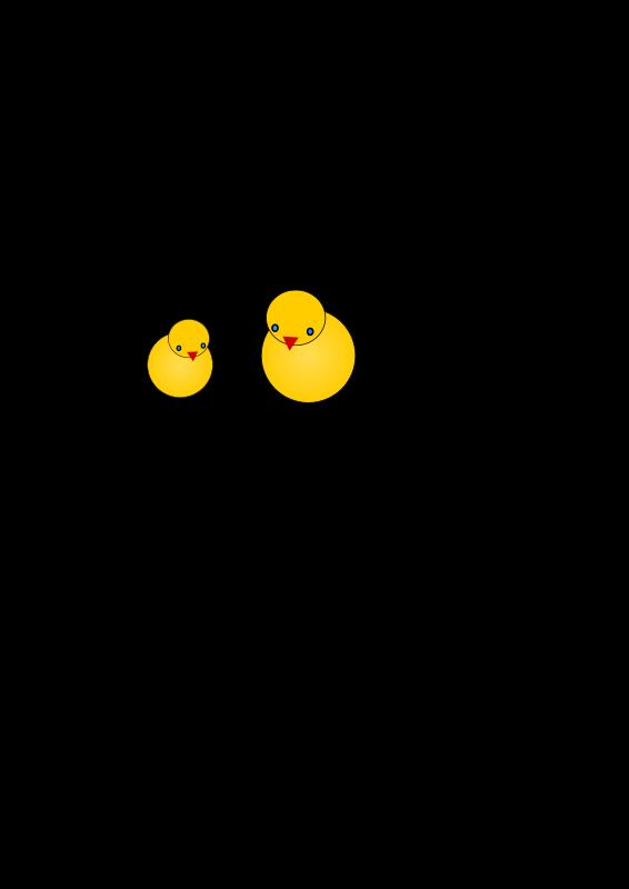 Free chicks