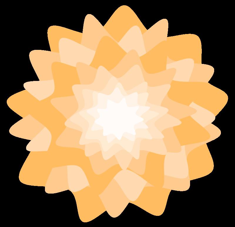 Free Orange Flower
