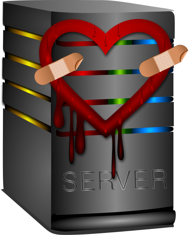 Free Heart Bleed Patch 2