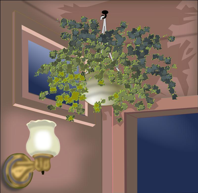 Free Hanging Plant