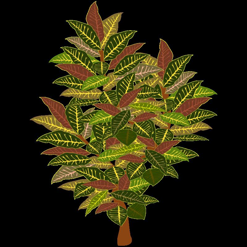 Free tree-11