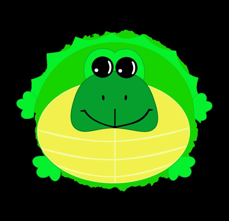 Free Big Turtle