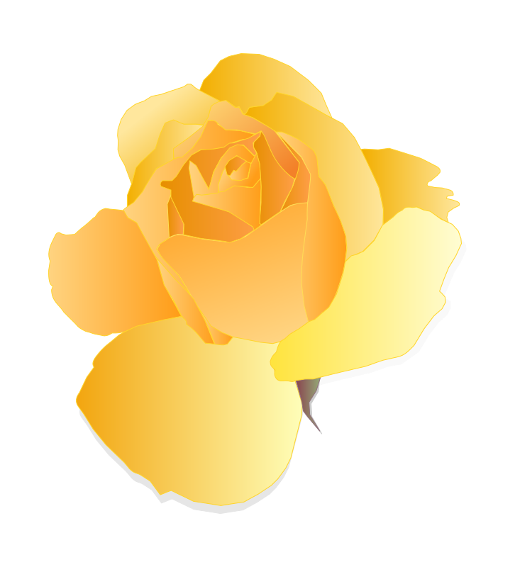 Free Yellow Rose