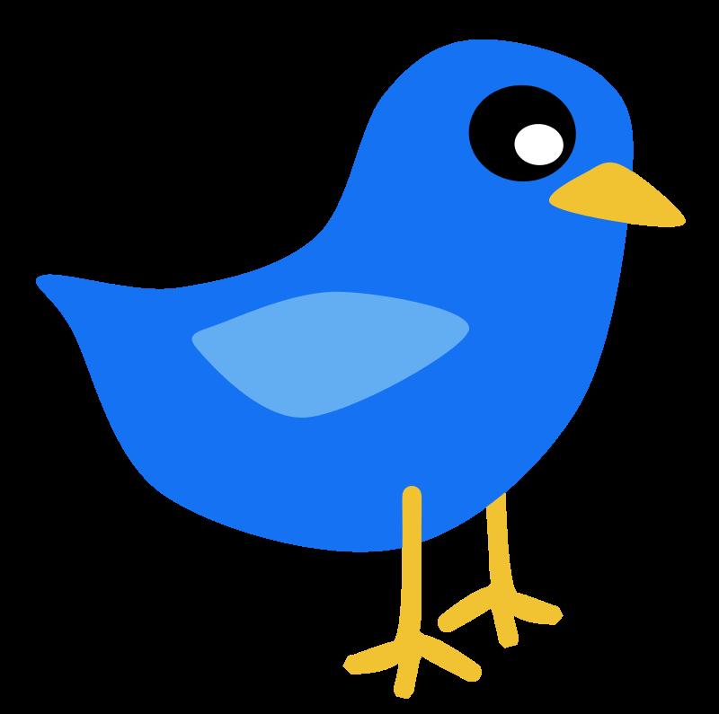Free Blue Bird