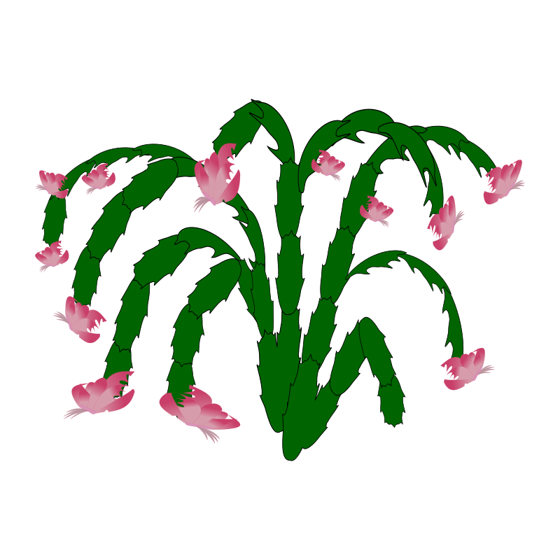 Free plant-03