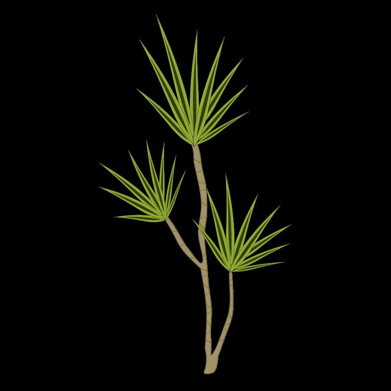 Free plant-02