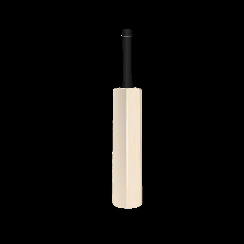 Free Cricket Bat