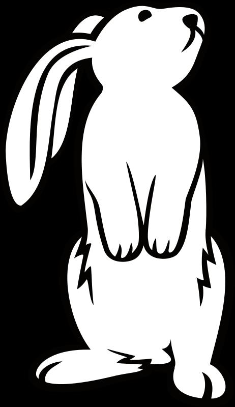 Free White Bunny
