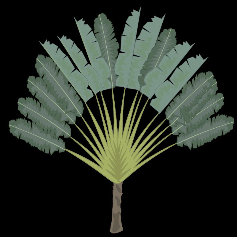 Free tree-09