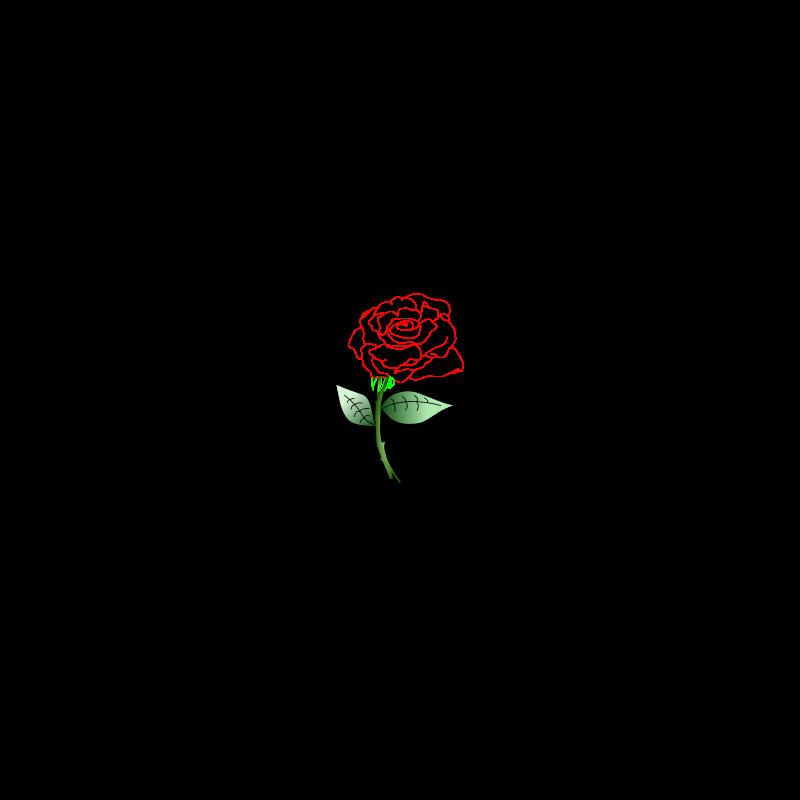 Free Single Rose