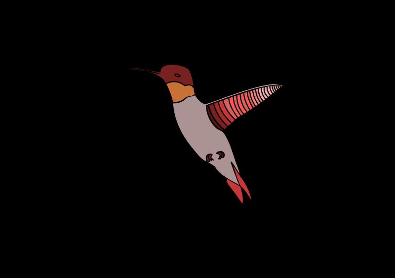 Free flying humming bird