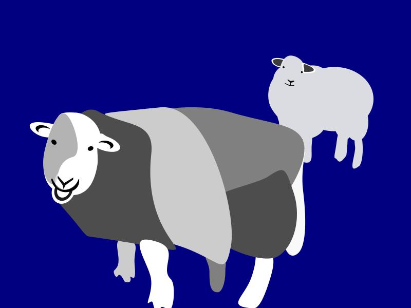 Free 2 stehende Schafe