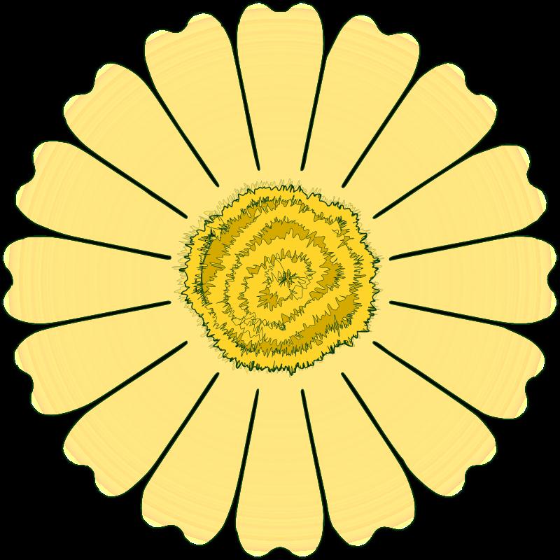 Free Flower Daisy 16 petal