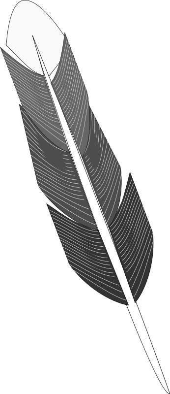Free Grayscale Feather