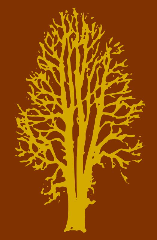Free Beech Tree - 2 Colours