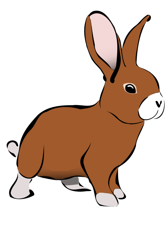 Free Brown Rabbit