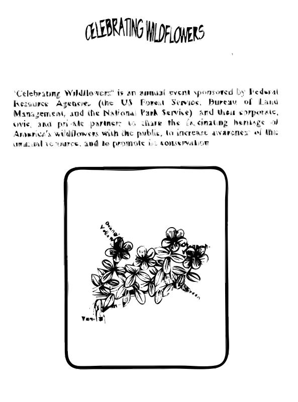 Free Bog St. Johns Wort Coloring Guide